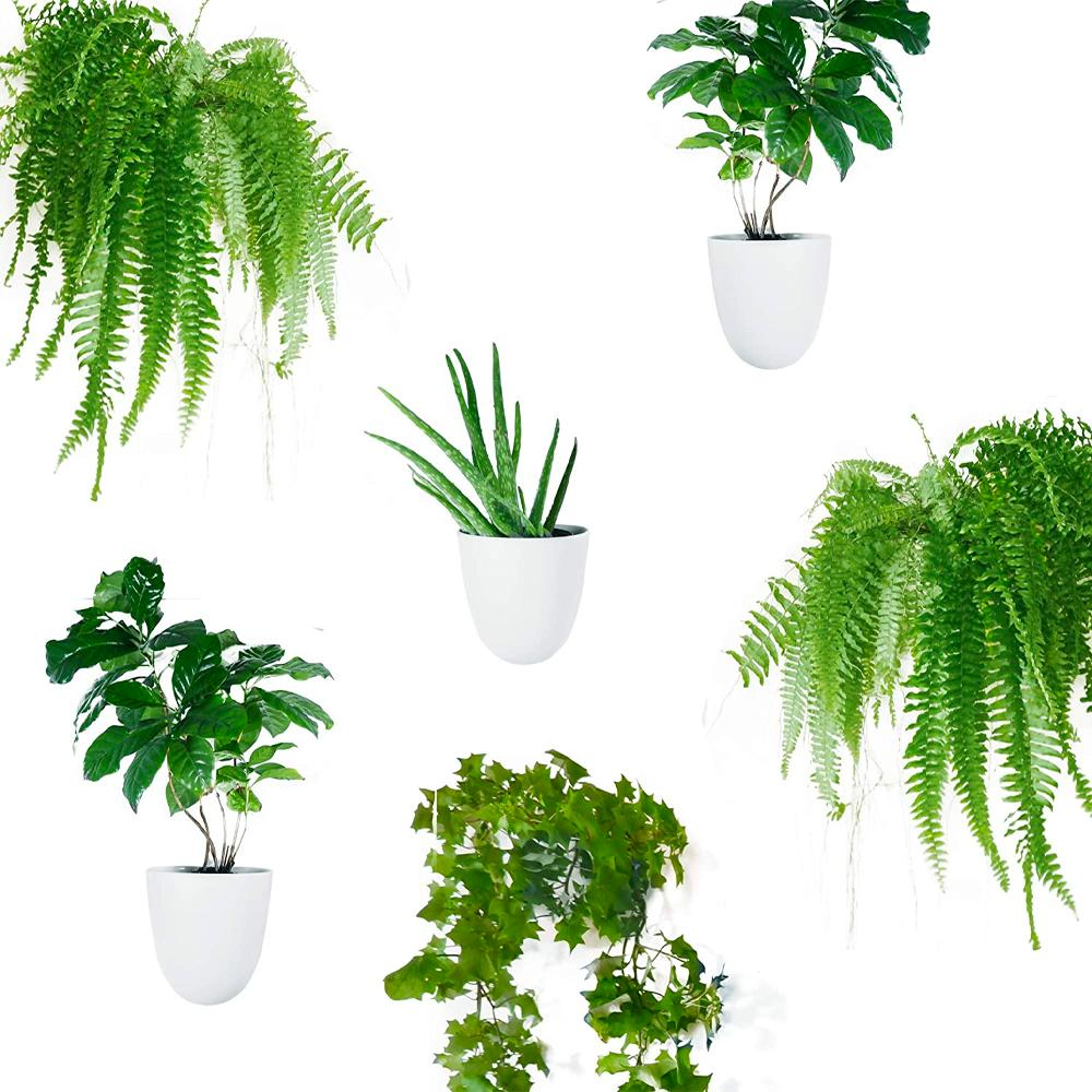 Make Good Wall Planters 6pk