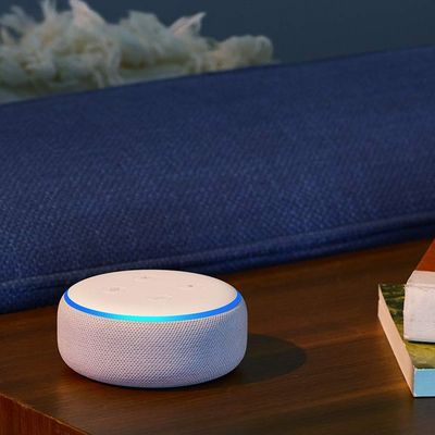 Echo Dot two-pack