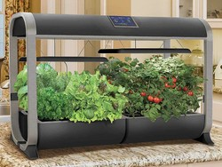 Grow your own food inside with the $387 AeroGarden Farm 12-inch hydroponic garden