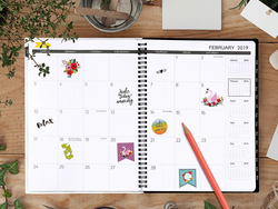 Never miss a birthday in 2019 with one of these monthly or weekly planners for $4