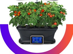 Grow your own with the $180 AeroGarden Bounty Kit