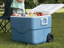 This $36 cooler will keep 84 cans of your favorite drink cold for days