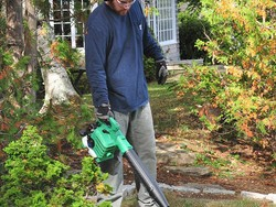 This Hitachi leaf blower is down to its lowest price at the perfect time