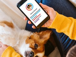 Discover more about your rescued pup with $30 off an Embark Dog DNA Test