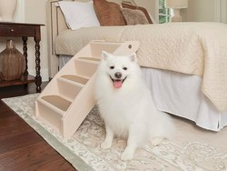 Best pet stairs in 2020