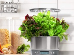 Cultivate countertop crops with the AeroGarden Harvest Elite 360 at $80 off