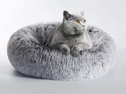 The best cat beds in 2021