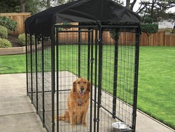 The best dog kennels in 2021