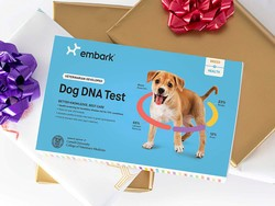 Embark dog DNA and ancestry kits drop to all-time low prices for Prime Day