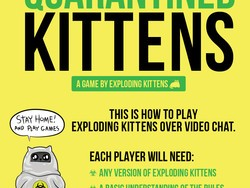 Play games and have fun while social distancing with Quarantined Kittens