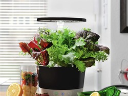 Grow your own greens in your kitchen with $65 off AeroGarden's Harvest 360
