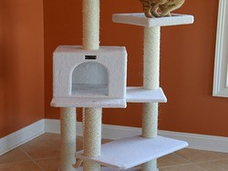 Your cat is going to love this $50 Armarkat Cat tree Condo