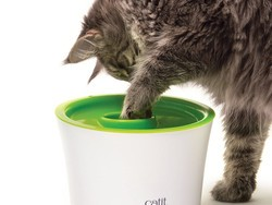 Make your cat happy with this $6 Catit Multi Feeder