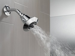 Feel the flow with this $15 Delta Adjustable Chrome Showerhead