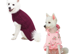 Keep your dog warm and fashionable with up to 25% off Burberry Pet clothes today only