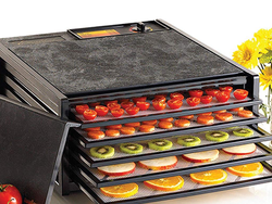 Dry fruits, veggies, meats, and more with $90 off this Excalibur 5-tray dehydrator