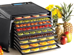 Dry fruits, veggies, meats, and more with this $155 Excalibur 9-tray dehydrator