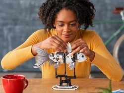 Lego debuts its new Forma product line for adults via Indiegogo