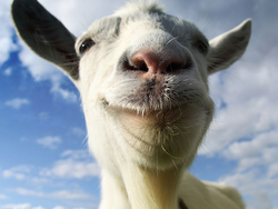 Live out your wildest fantasies of being a goat with these $1 iOS simulator apps