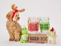 This $28 limited-edition Grinch BarkBox makes the perfect pupper present