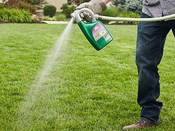 Keep your lawn looking nice with Ortho Weed B Gon for $11