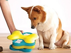 Keep your furbaby entertained with up to 25% off these interactive games