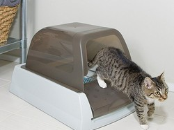 Clean less messes with this $100 PetSafe automatic self-cleaning litterbox
