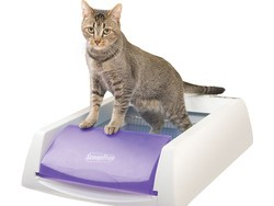 Take something off your to-do list with the $104 PetSafe ScoopFree Self-Cleaning litter box