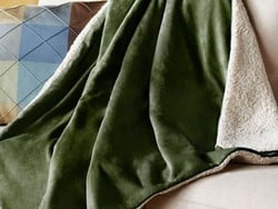 This $48 Sunbeam heated blanket will get you through the winter