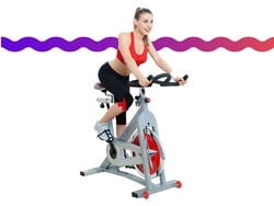 Burn off those holiday calories with the Sunny Health & Fitness cycling bike