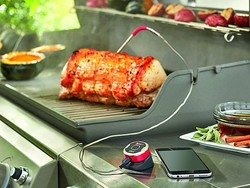 Buying this $25 Weber iGrill Mini would be a smart choice