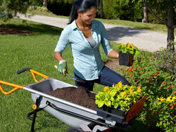 The $102 Worx Aerocart transforms from wheelbarrow to dolly to yard cart in an instant