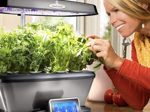 The $160 AeroGarden Bounty Elite lets you grow herbs any time of the year