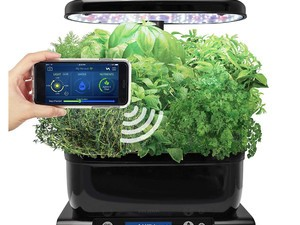 This AeroGarden Harvest kit can be controlled right from your phone