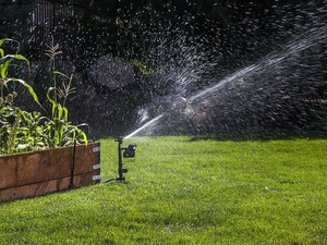 Keep unwanted visitors away with this $38 motion-activated sprinkler