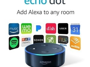 Your time to buy an Echo Dot for $30 begins now