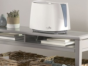 Fight germs and allergies with this $46 Honeywell Humidifier
