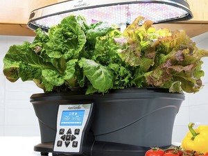Grow herbs and veggies right in your kitchen with the $140 AeroGarden Ultra