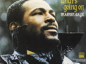 Add What's Going On by Marvin Gaye to your vinyl collection for just $13