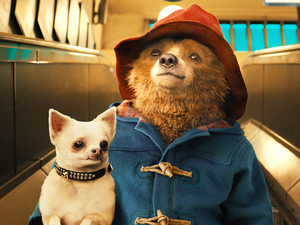 Paddington is fun for the whole family at just $5 in Digital HD