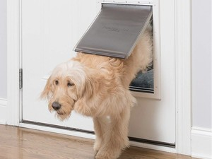 Give your pet some freedom with a new $80 PetSafe pet door