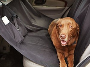 The $16 AmazonBasics Seat Cover for Pets will keep your car looking pristine