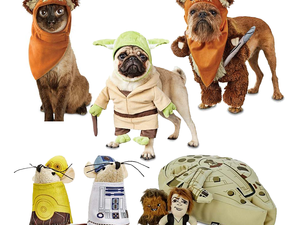 Dress your pet like Yoda or Chewbacca with up to 60% off Star Wars items at Petco