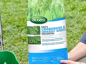 Improve your yard year-round with this $11 bag of Scotts Halts Crabgrass & Grassy Weed Preventer